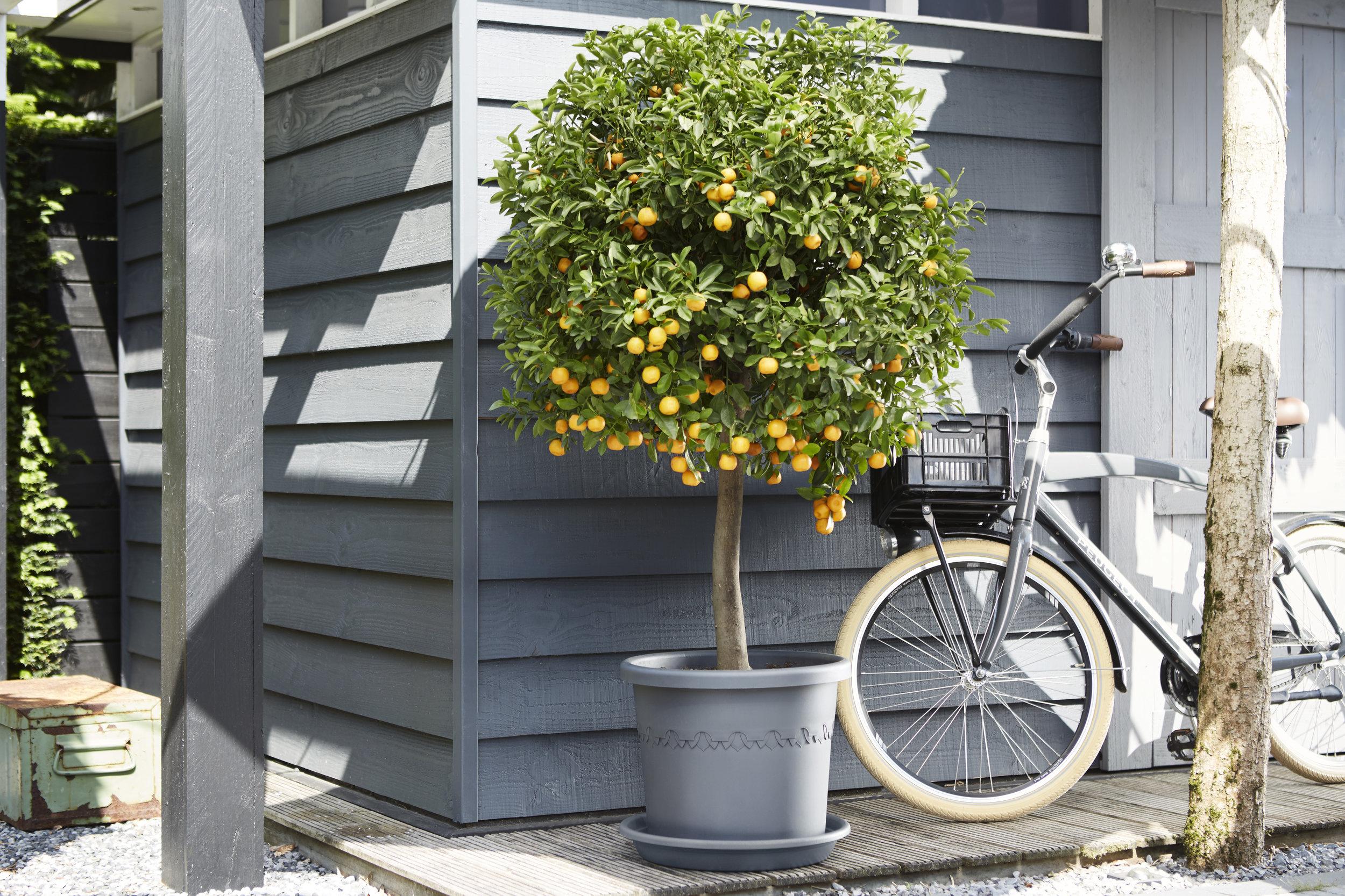 outdoor algarve cillindro.i2 - copie.jpg