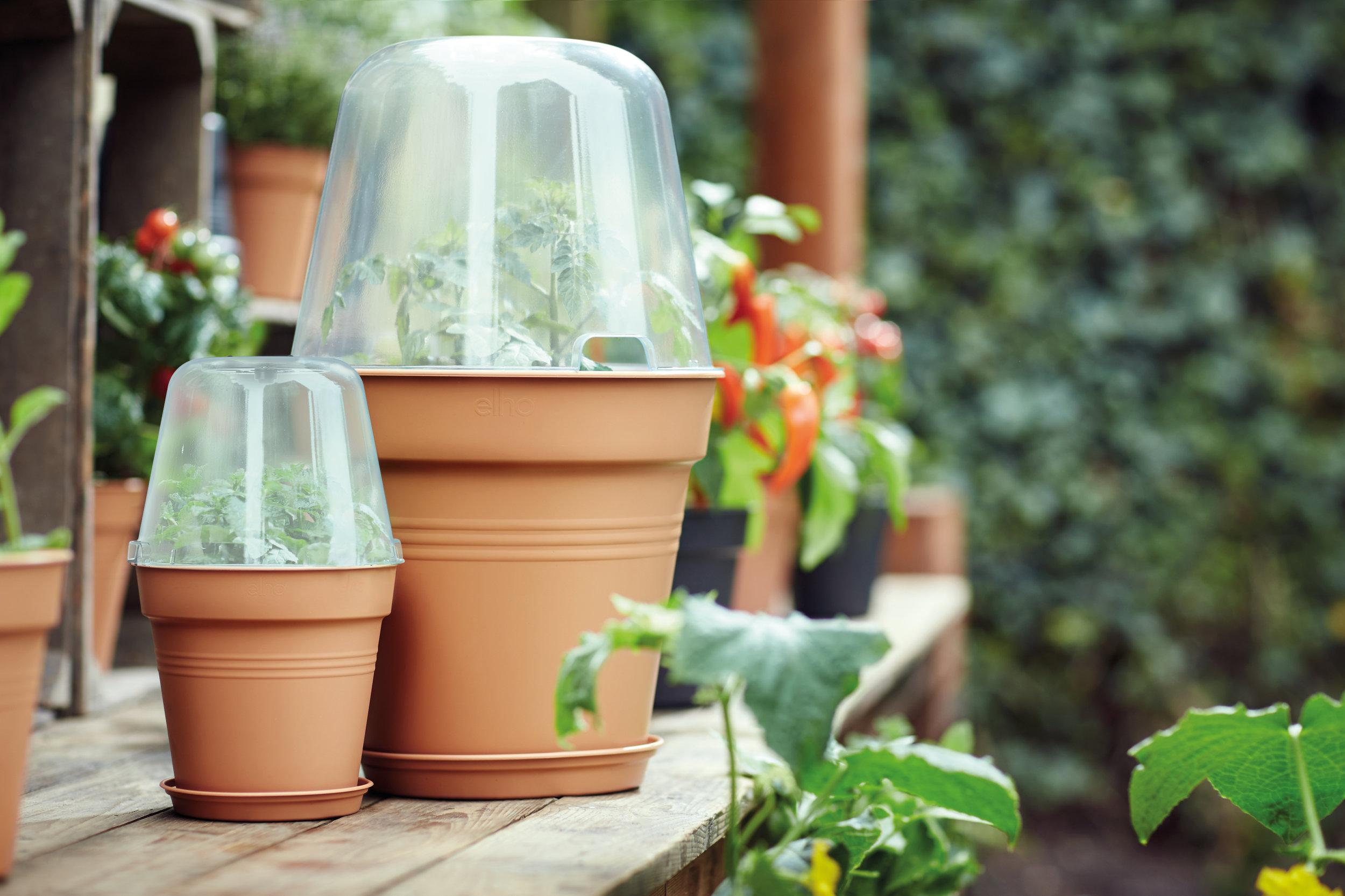 green basics grow house round.i1.jpg