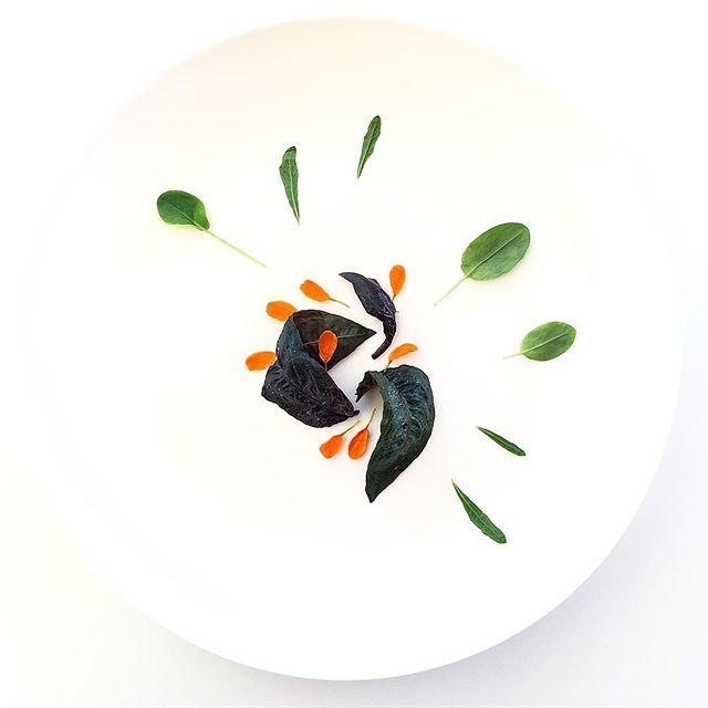 Akatade. Green Sorrel. Epazote. Marigold. Grown in downtown Manhattan. #foodie #nycfood #foodstagram #foodporn #vegan #plantbased #herbs #plating #chef #cheflife #minimal #salad #eatmoregreens