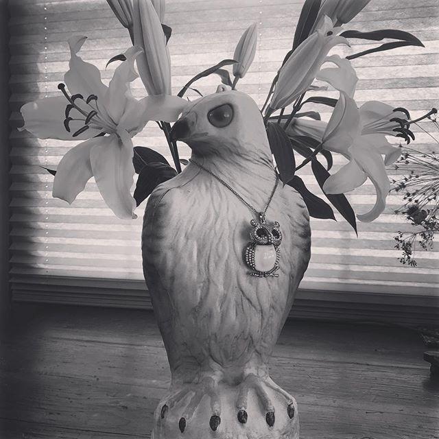 #blackandwhite #owls #owlsofinstagram #snowyowl #60sfashion #valentines #❤️#glimmerglassantiques.com