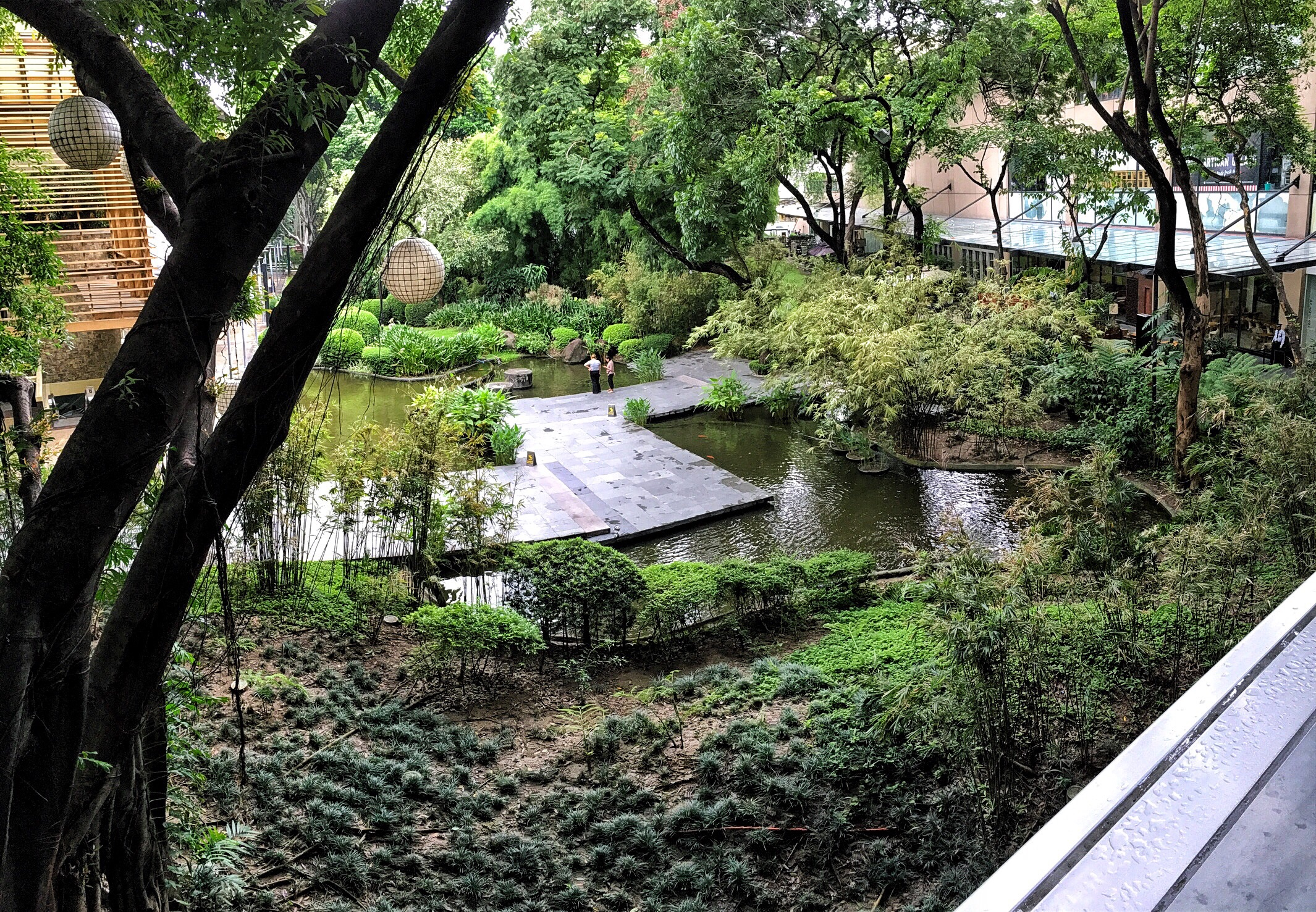 Enjoying some down time leading up to the APCC convention here in the Philippines. A view of the koi ponds,.. part of the Greenbelt Shops across from my hotel here in Makati.