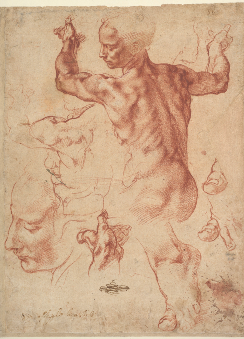 """Studies for the Libyan Sibyl"" (circa 1510-11) by Michelangelo Buonarroti (Italian, Caprese 1475–1564, Rome). (The Met Breuer)"