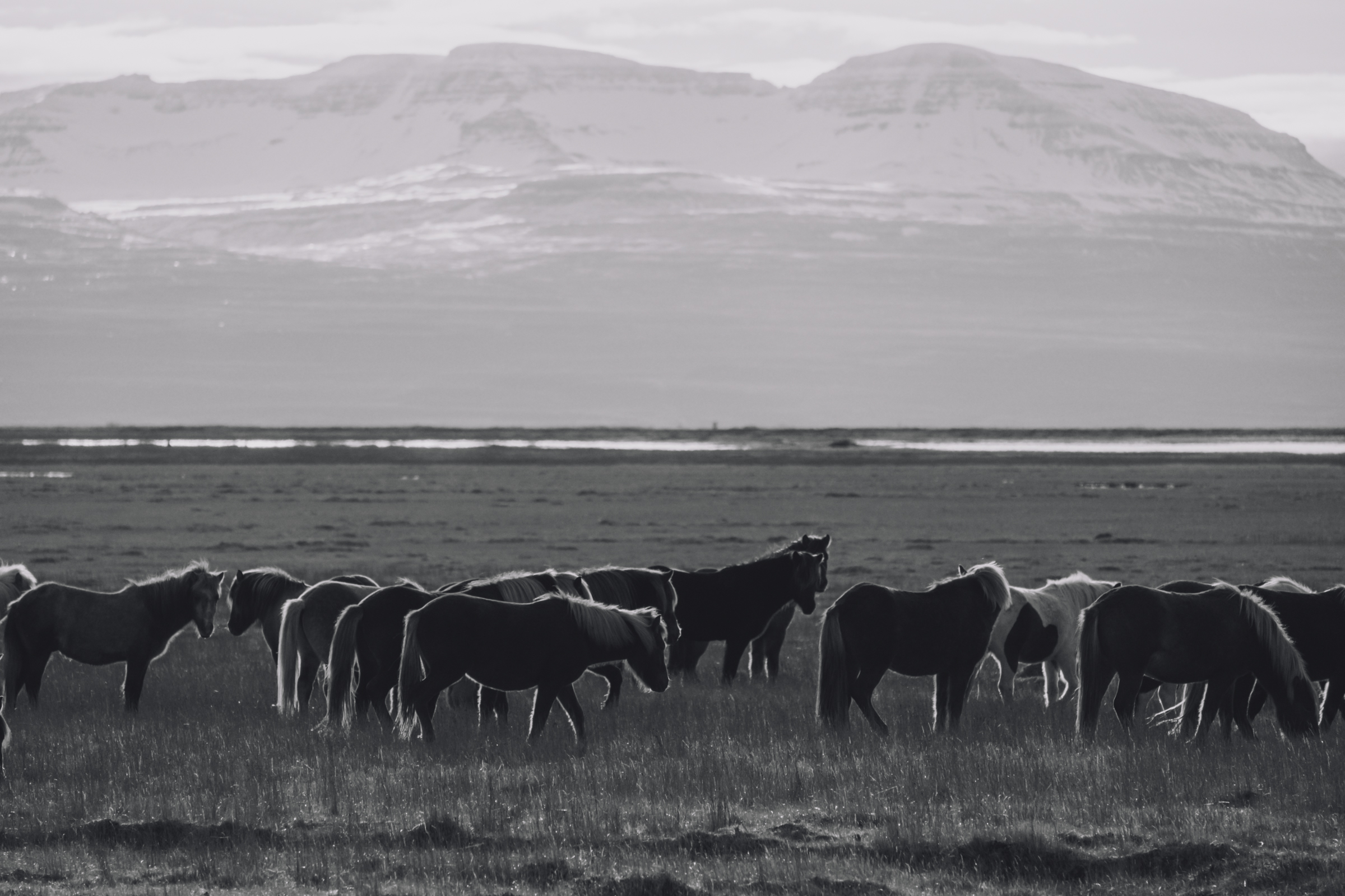 20131008-053-Iceland_Travel_Editorial.jpg