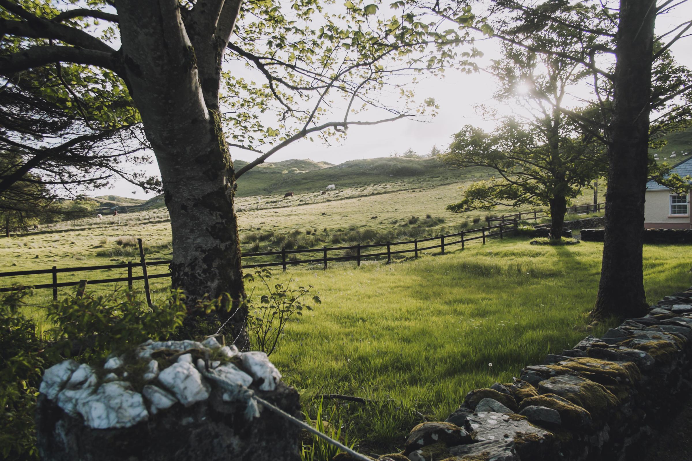 20150612-027-Ireland_Travel_Editorial.jpg