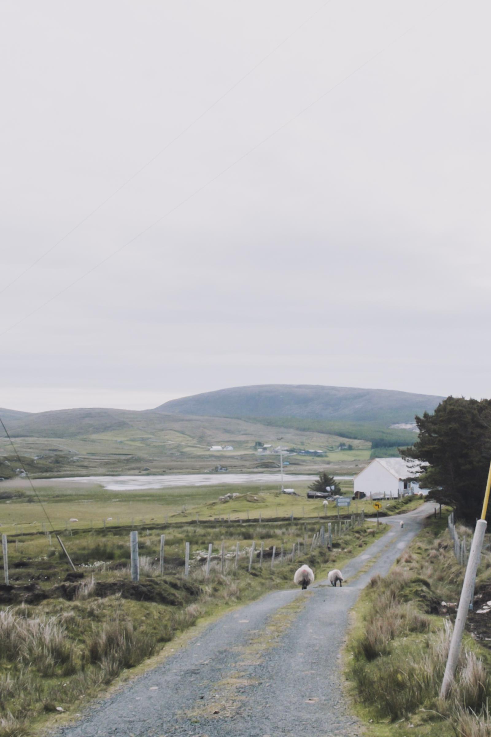20150615-055-Ireland_Travel_Editorial.jpg