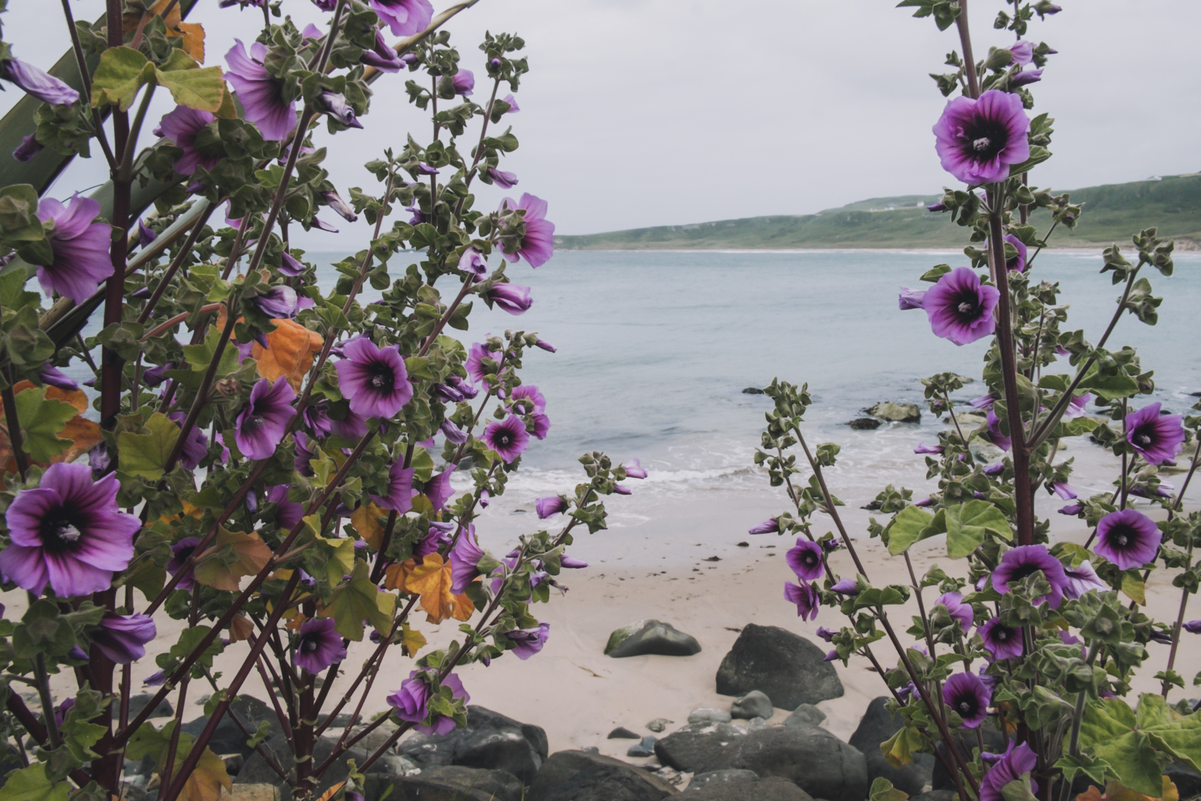 20150618-087-Ireland_Travel_Editorial.jpg