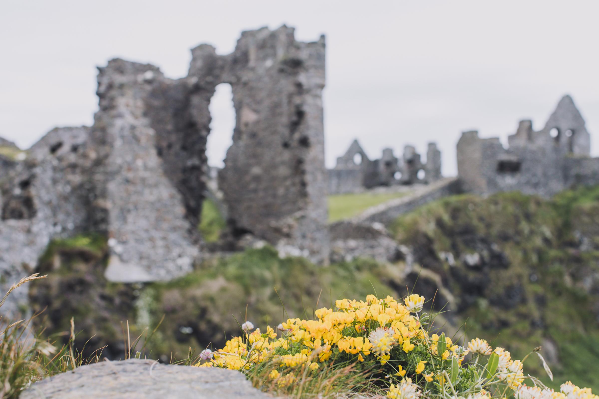 20150619-099-Ireland_Travel_Editorial.jpg