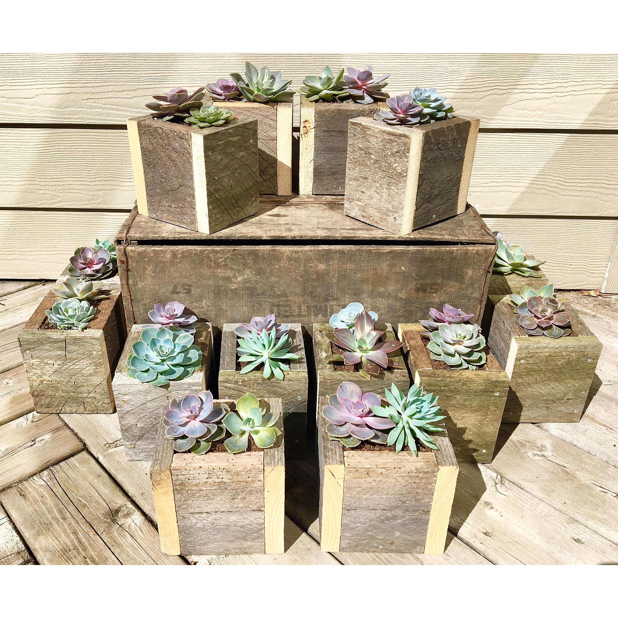 Barn wood wedding centrepieces
