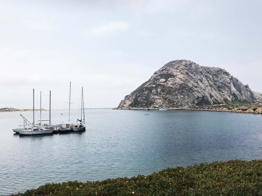 This 22-23 million year old rock isn't alone on the coast--it is one of Nine Sisters of rocks that extend from Morro Bay to San Luis Obispo hills. The rocks probably came about from volcanic activity.