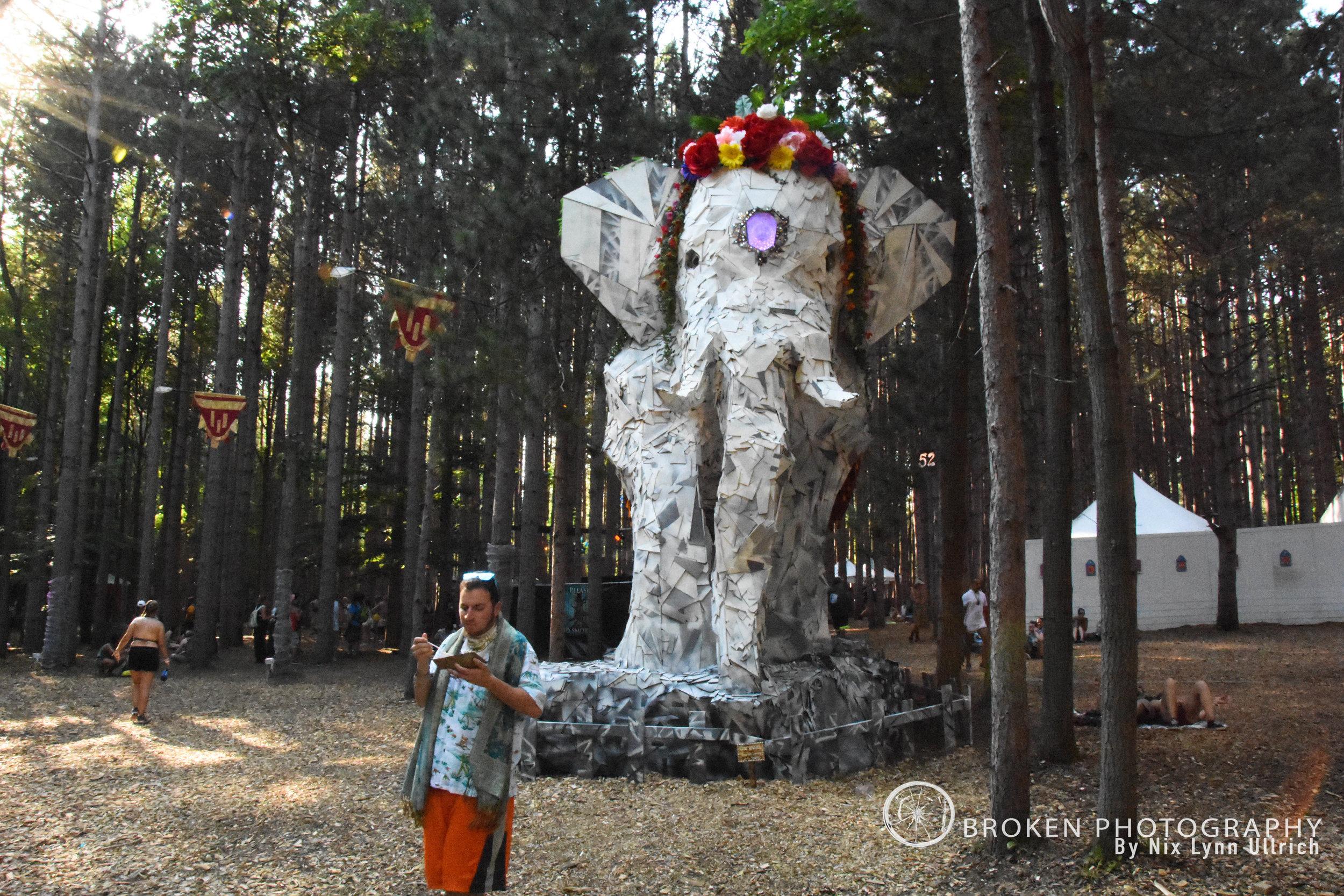 BP_Forest033.jpg