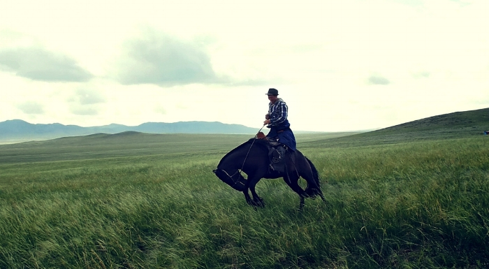 While occasionally ridden, many Steppe horses are kept semi-wild to better ensure their self-sufficiency and survival.