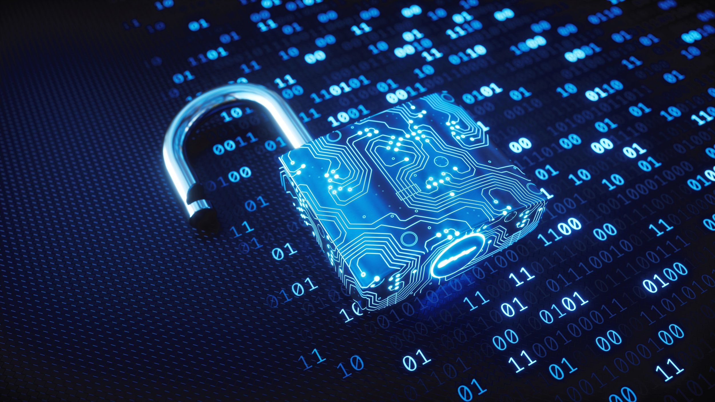 Cyber Risk Advisory
