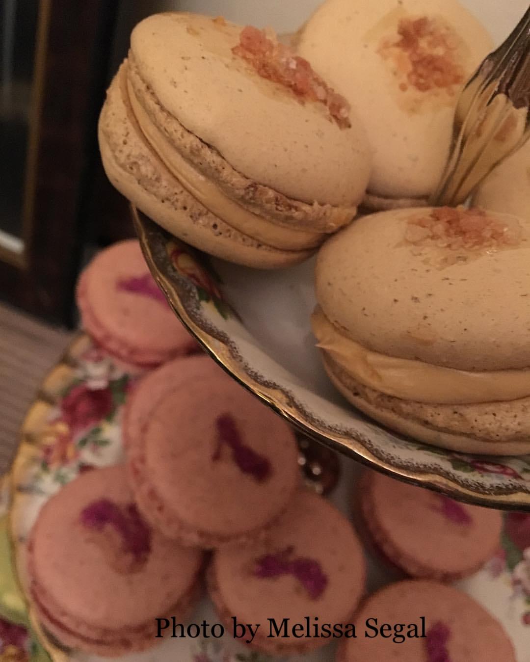 Viweing Party gallery - macarons- Melissa Segal.jpg