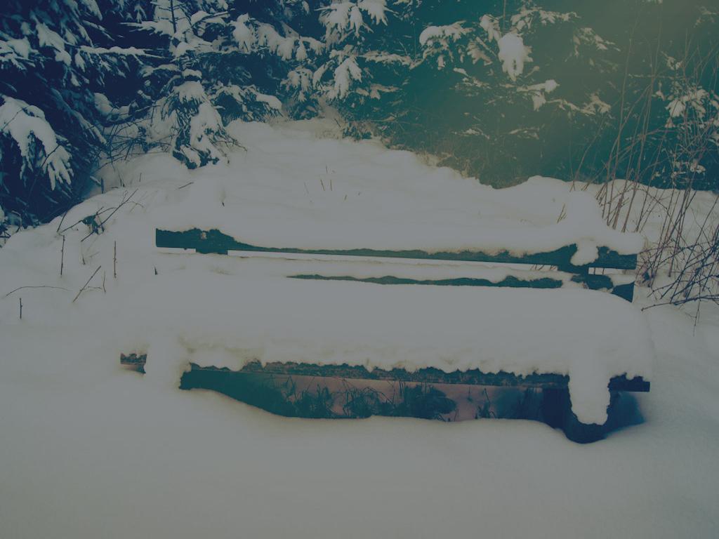 Fresh Snow  $1000