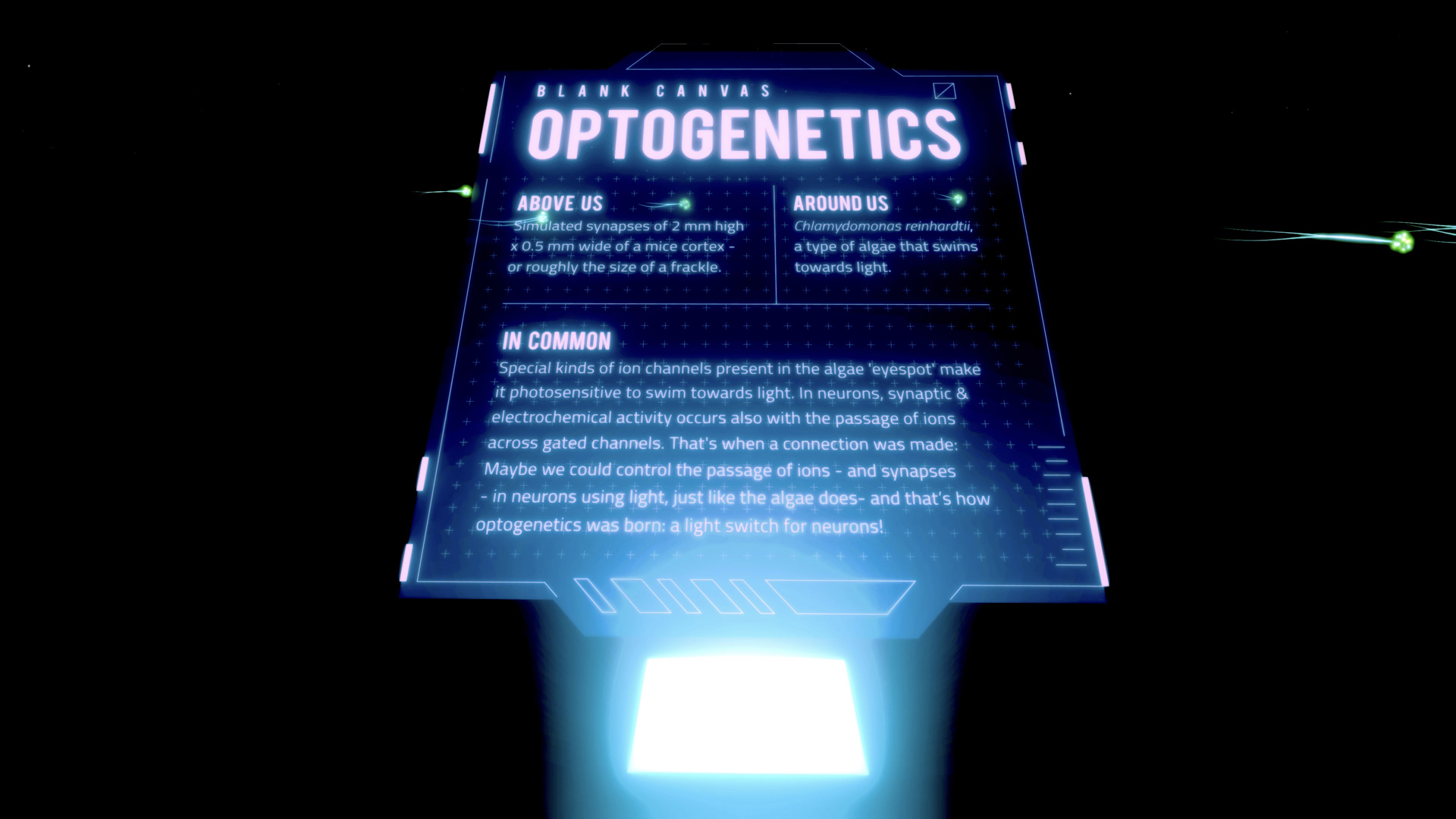 Blank Canvas: Optogenetics