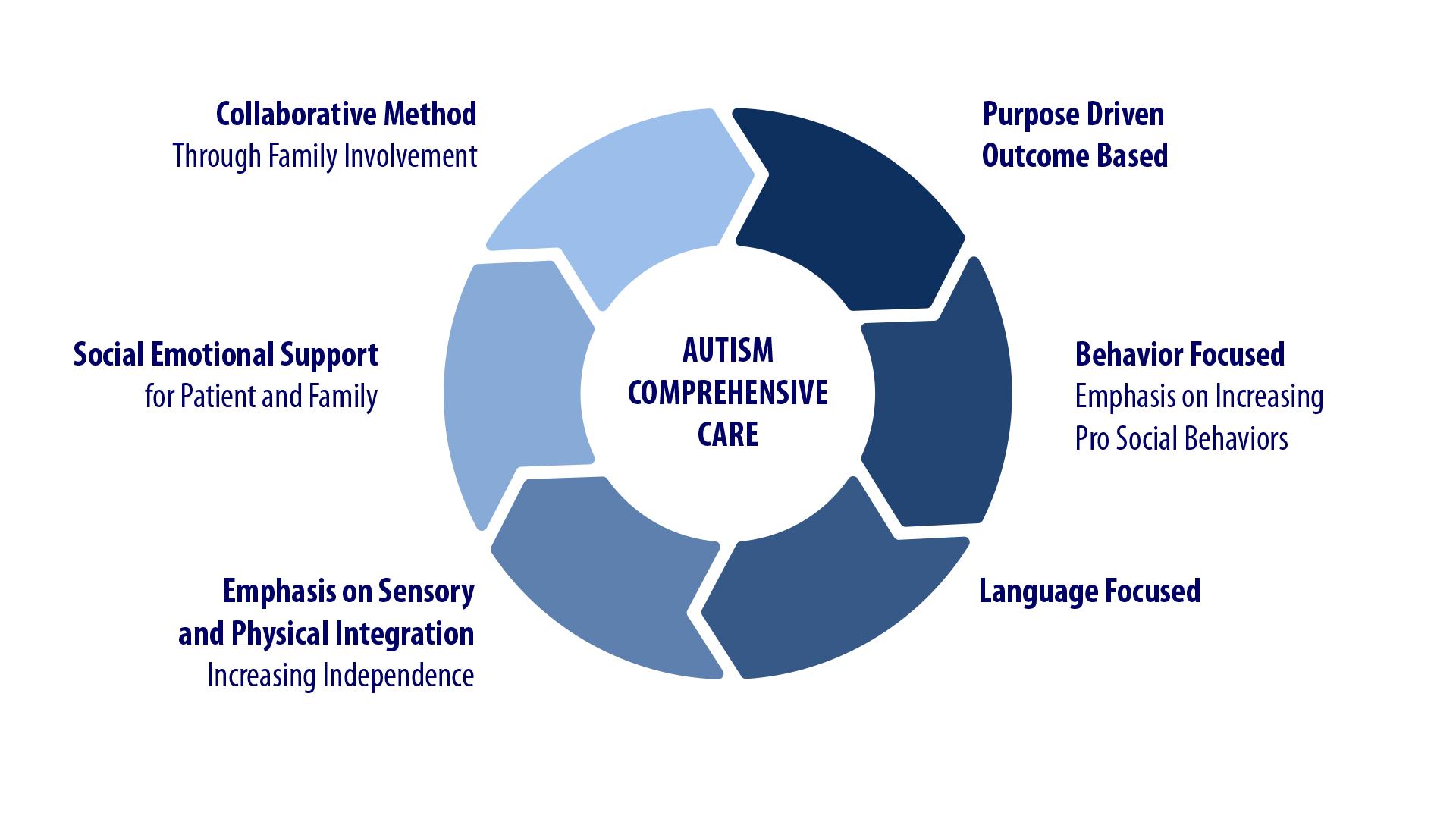 Autism CC graph.png