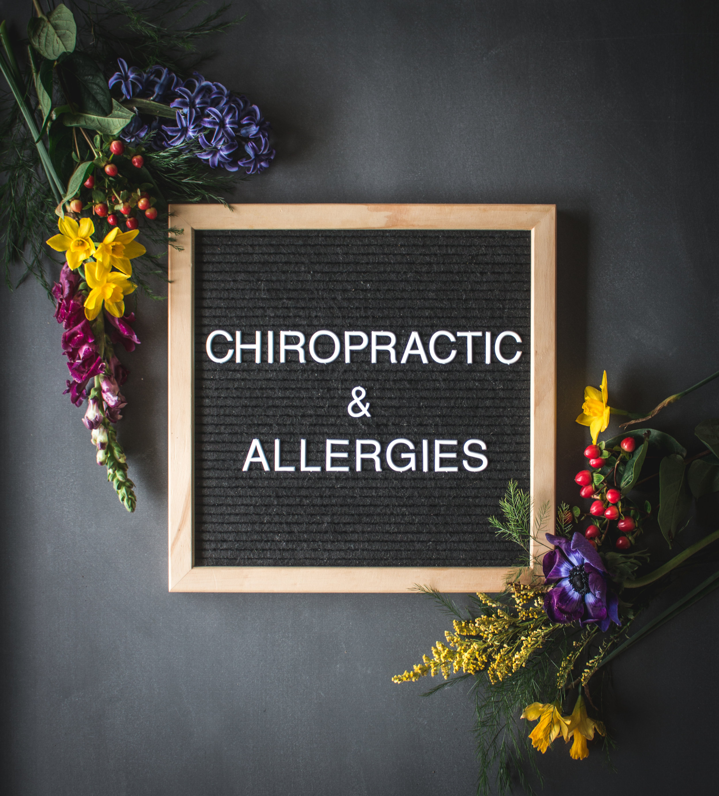 chiropractic and allergies (1 of 1).jpg