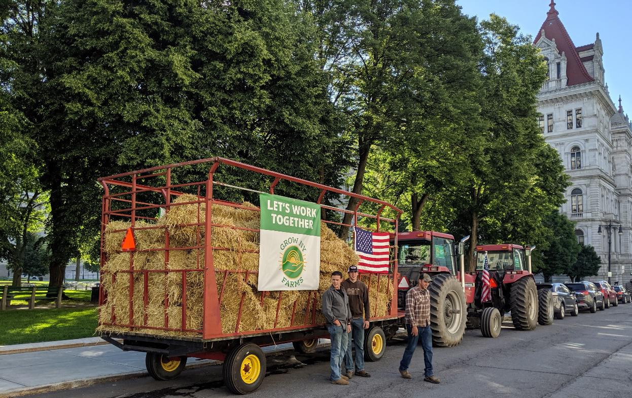 Farmer Tim Stanton and family drove tractors and hay wagon to the NYS Capitol to deliver a message to lawmakers.