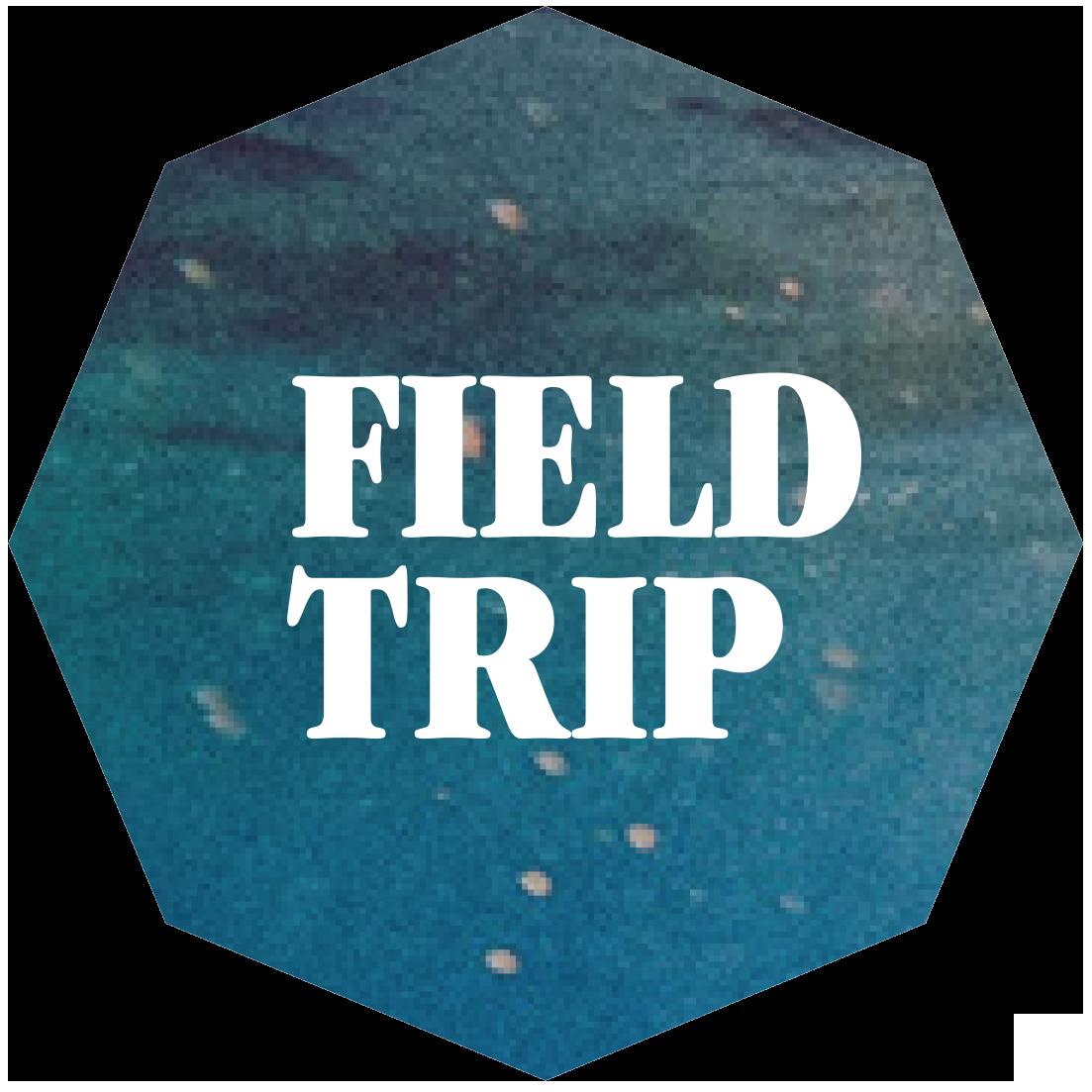 ft_header_logo.png
