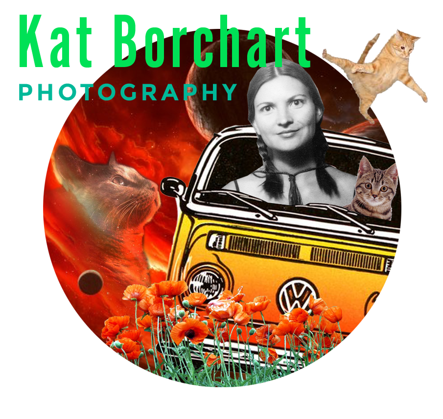 KAT BORCHART   Kat was Born and bred in the suburbs of Los Angeles and attended Brooks Institute of Photography in Santa Barbara before moving between Orange County and the Silverlake hills. She creates spontaneous, hair-in-your-face images filled with sunburns, palm trees and food trucks —also, the laid-back energy and magic natural light will make you want to turn on your away message and finally take those damn vacation days. When she's not working, she's probably knitting or buying another plant for her bungalow in Atwater Village, where she resides with her husband Evan.   katborchart.com
