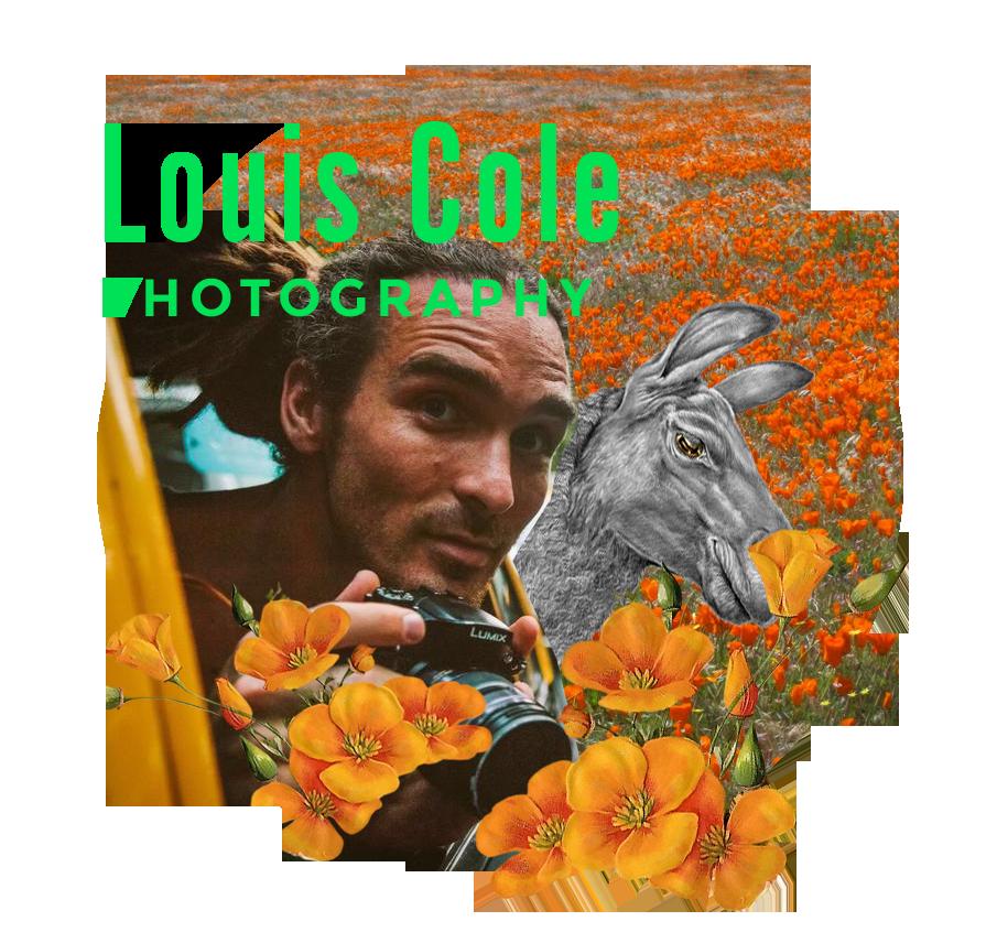 2017-Louis Cole_Teacher-CloseCropped-insidecircle.png