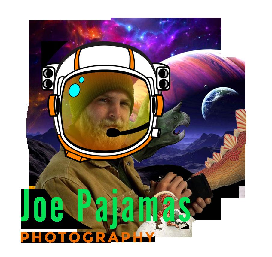 2019-Joe Pajamas_Teacher-CloseCropped-insidecircle.png
