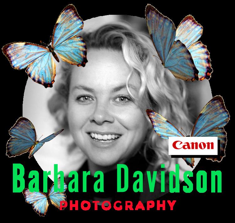 2019-barbara+davidson_Teacher-CloseCropped-insidecircle.png