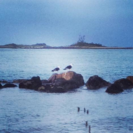 Port Sorell beach at dusk...