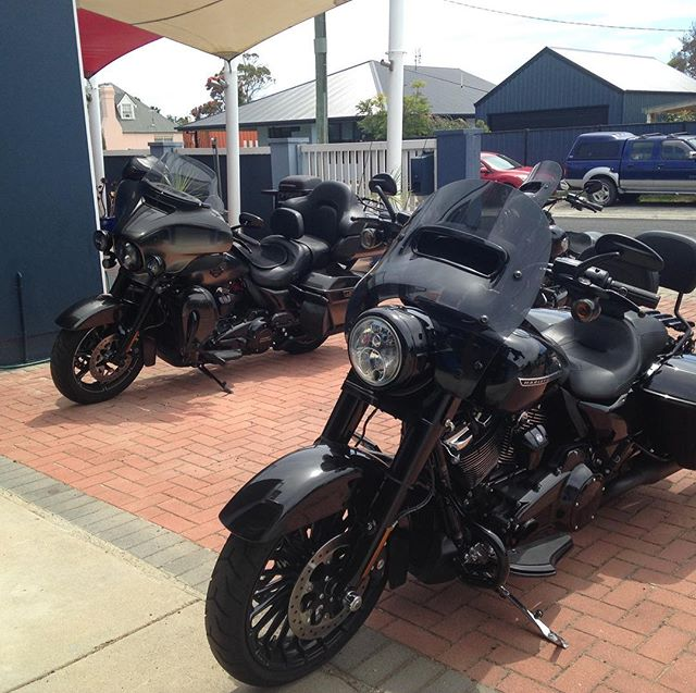 The Harley crew are in for their annual Hogs conference- great machines.