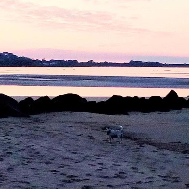 Winter evening Port Sorell...