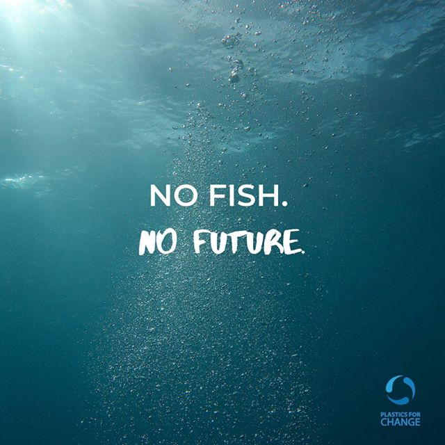 What happens when a fish eats plastic? 🐠 Plastic cannot disappear however it breaks down into microplastics. Fish unknowingly ingest this debris until their stomachs become full and they eventually die. 🥤 Mobilise people on the ground to collect plastic before this happens. #plasticsforchange