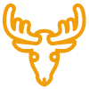 deer-head.jpg