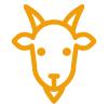 an-goat.jpg