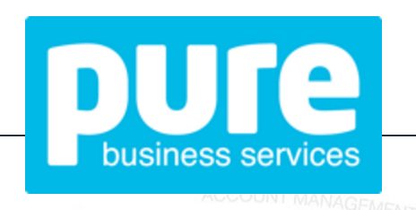 Pure Business Services logo