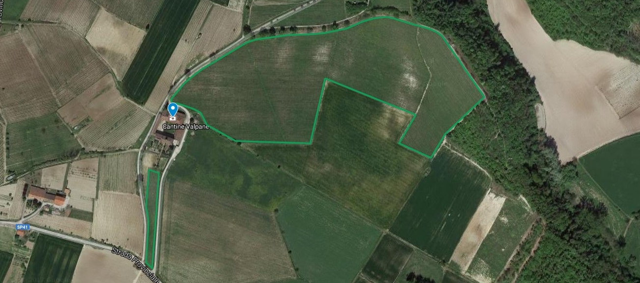 The vineyards of Valpane – Click on the image to switch to Google Maps view