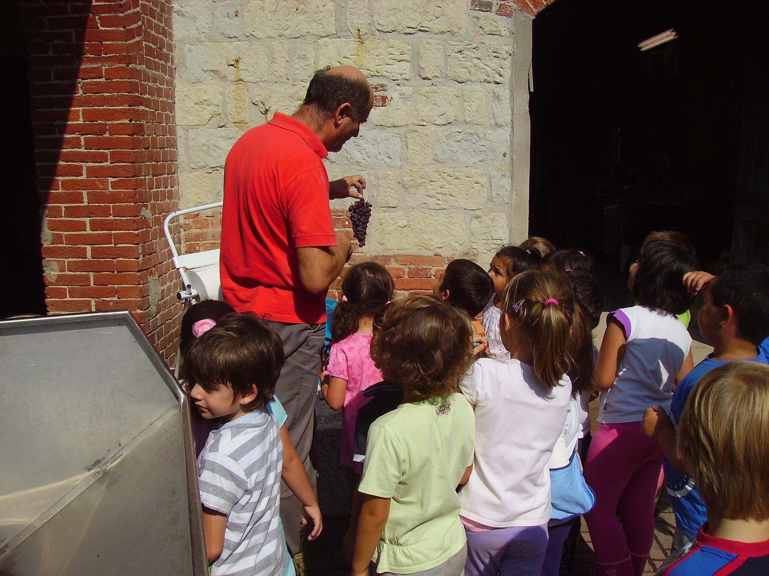 Young visitors at Valpane Winery