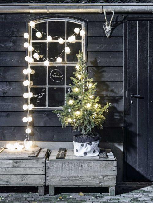 fairy lights 1.jpg