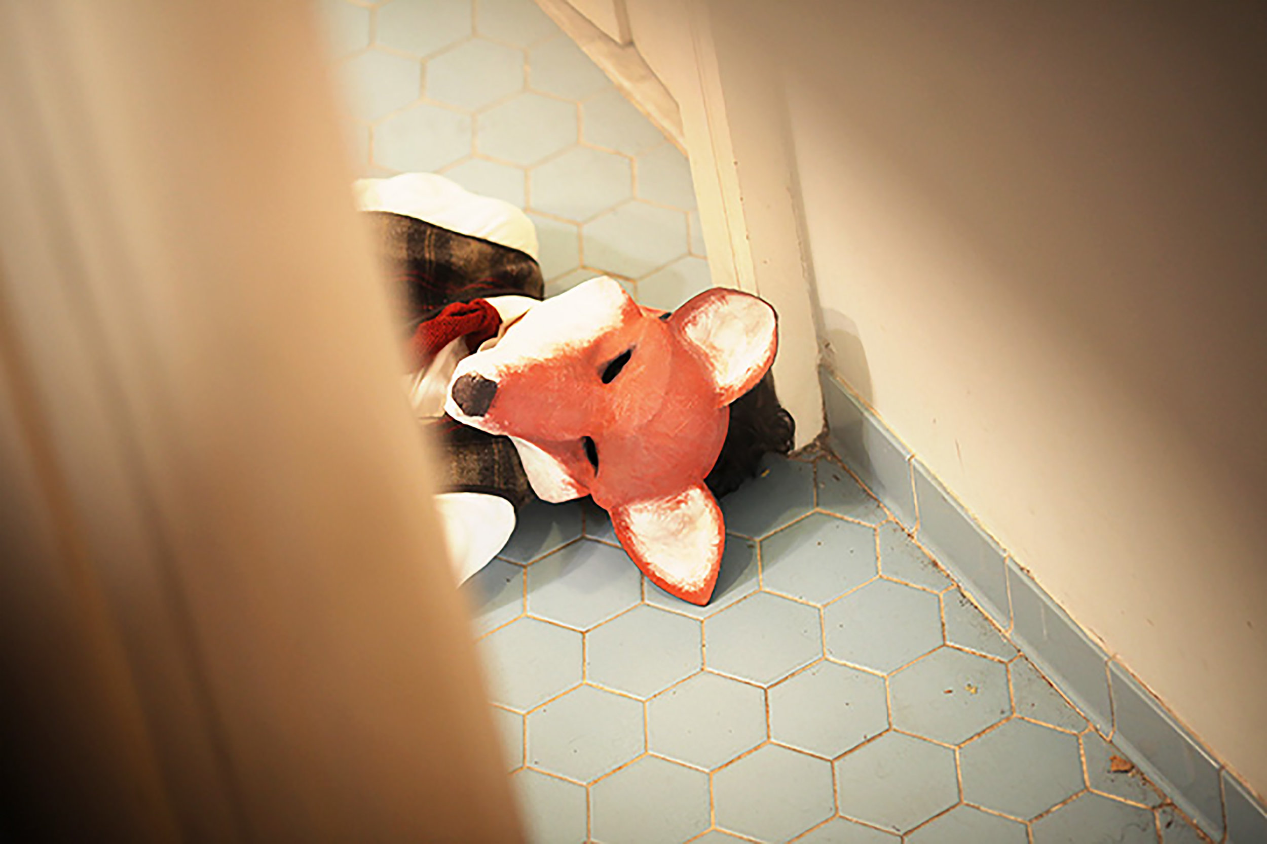 Mr. Fox's elimination - Party Animals  (2015)