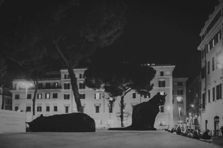 WAD-Italie-1102.jpg