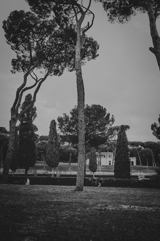 WAD-Italie-1112.jpg