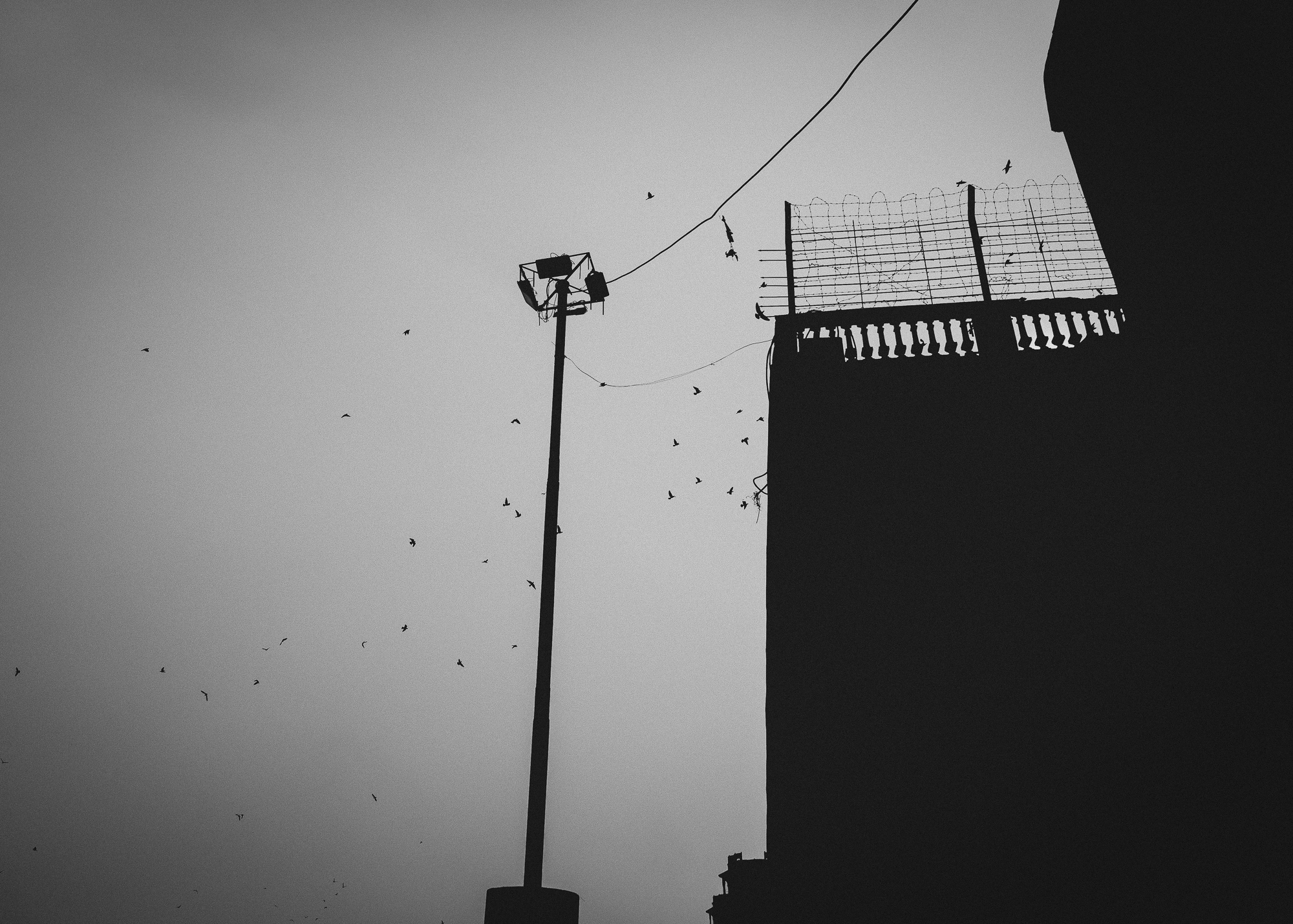 WAD-BD-Varanasi-5165.jpg