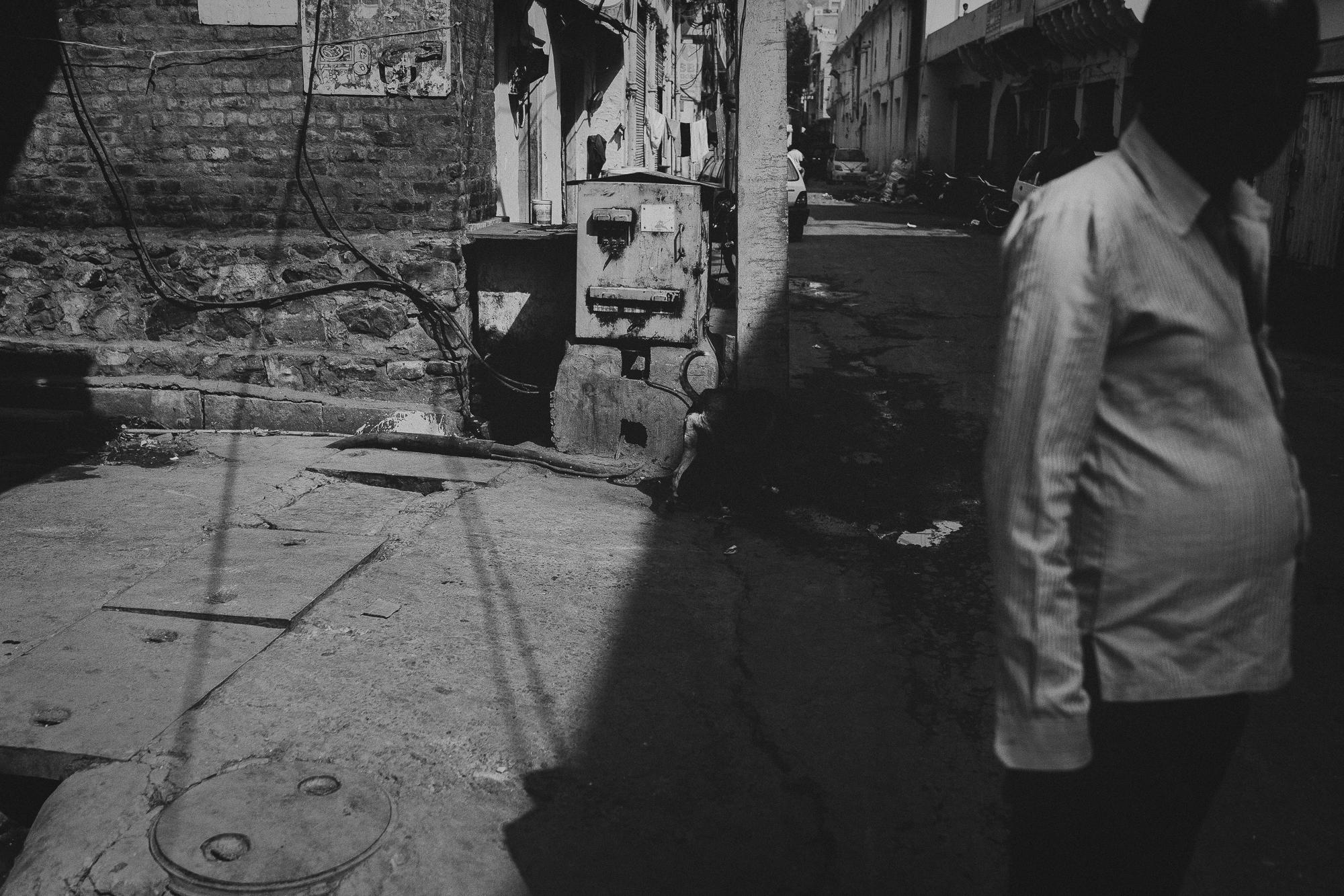 WAD-BD-Jaipur-4205.jpg