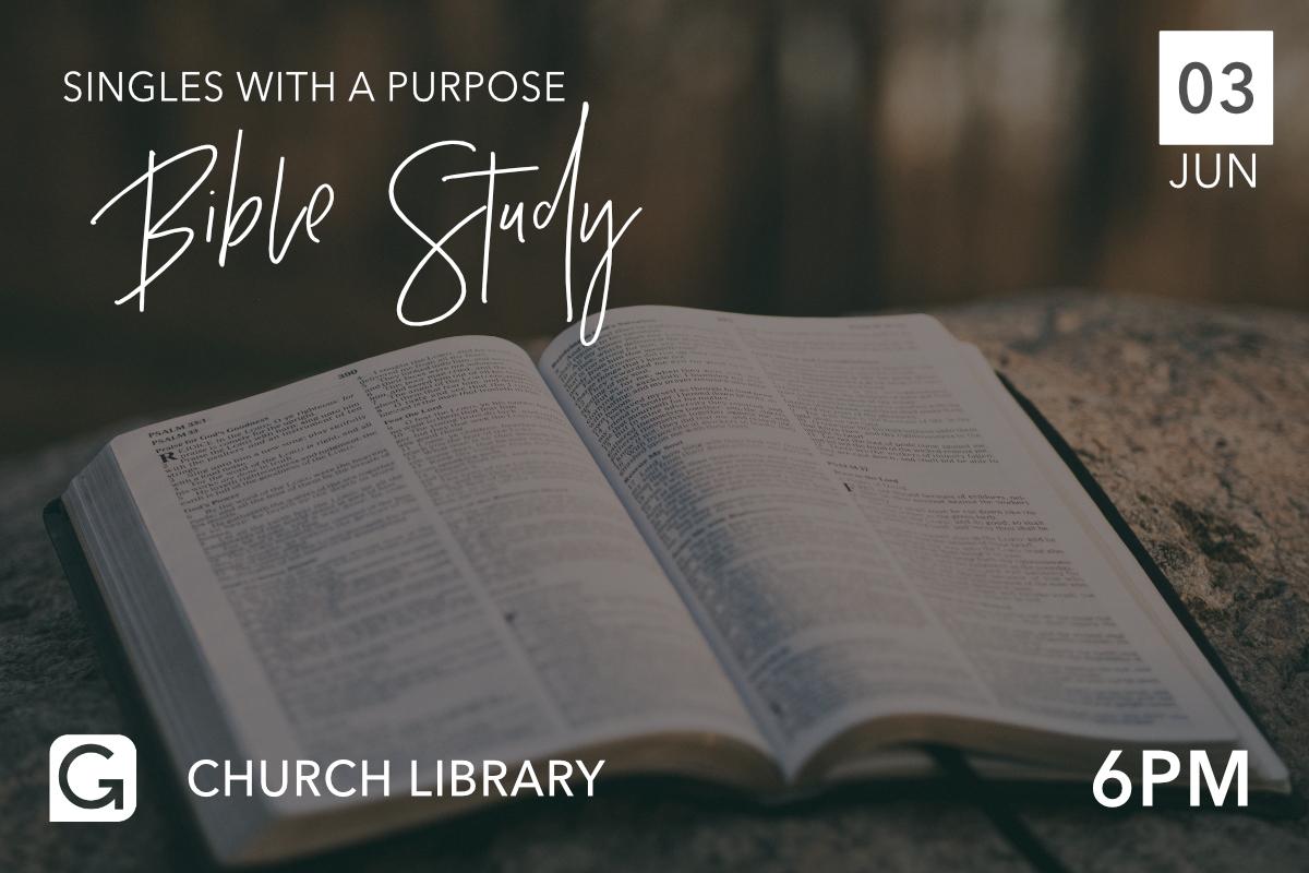 SWAP BIBLE STUDY JUNE.jpg
