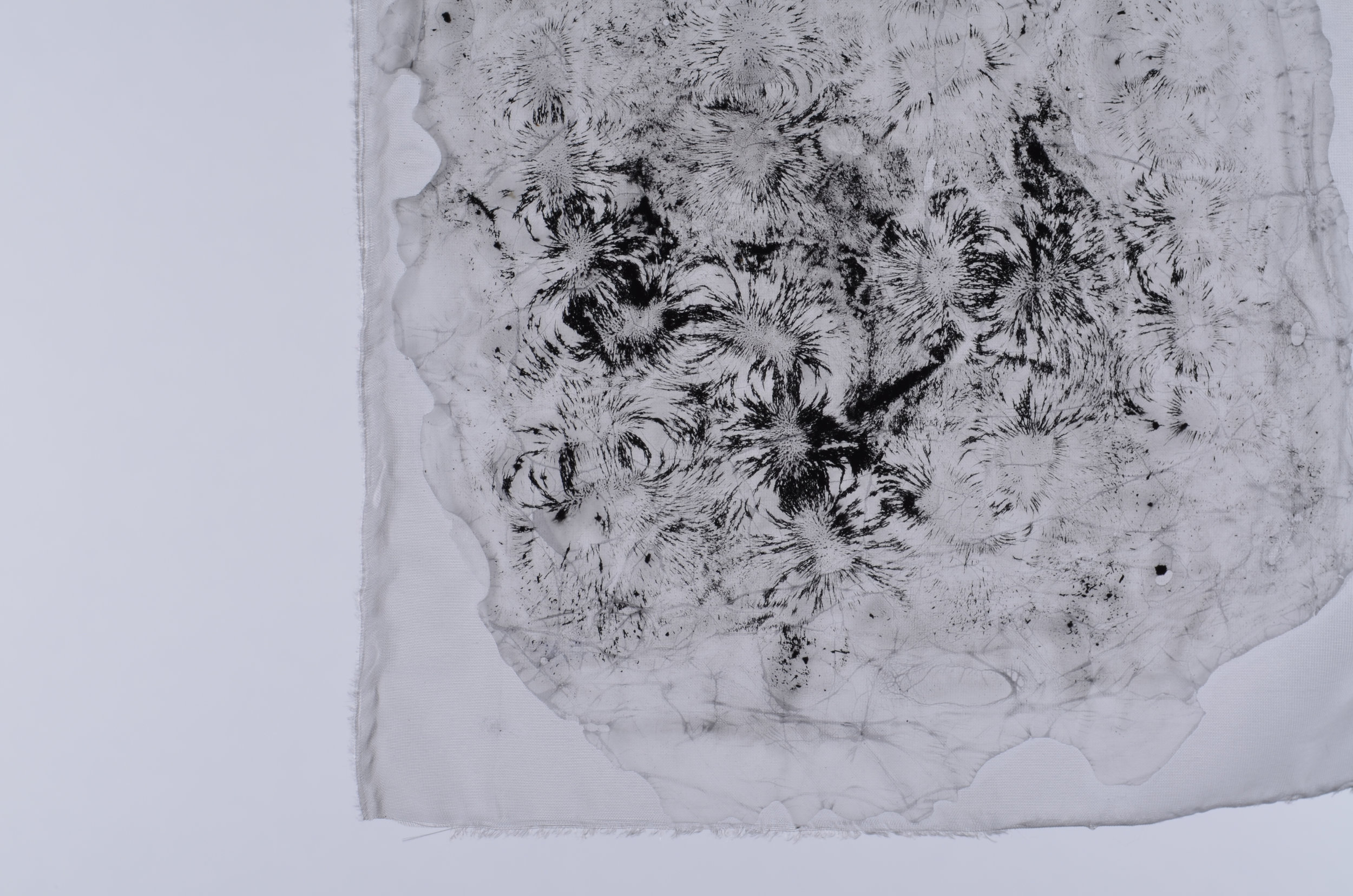 Iron Filings, Silk and Adhesive