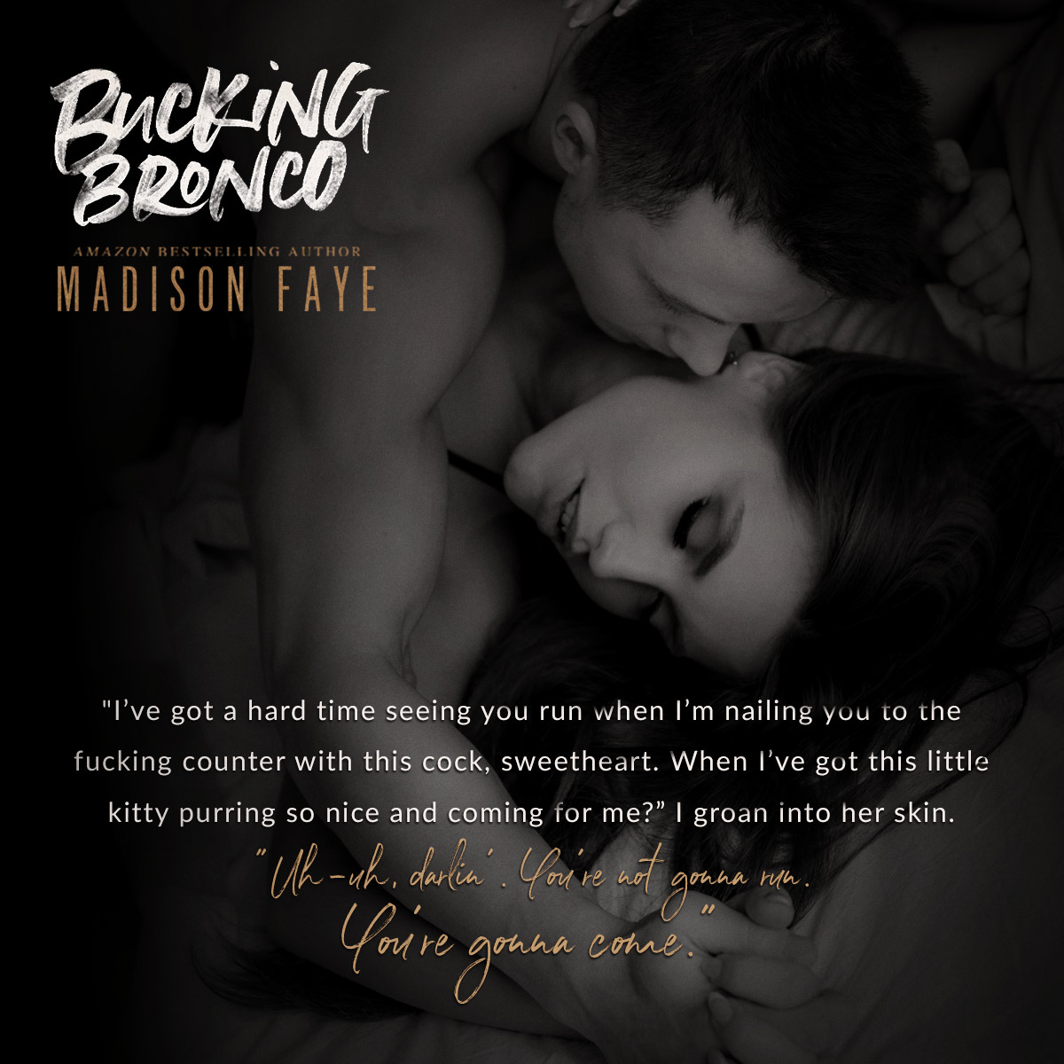 BuckingBronco_Teaser2.jpg