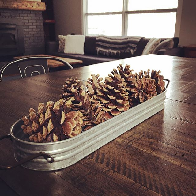 Put out some pine cones for some thanksgiving decor #itsstillfallbutfeelslikewinter