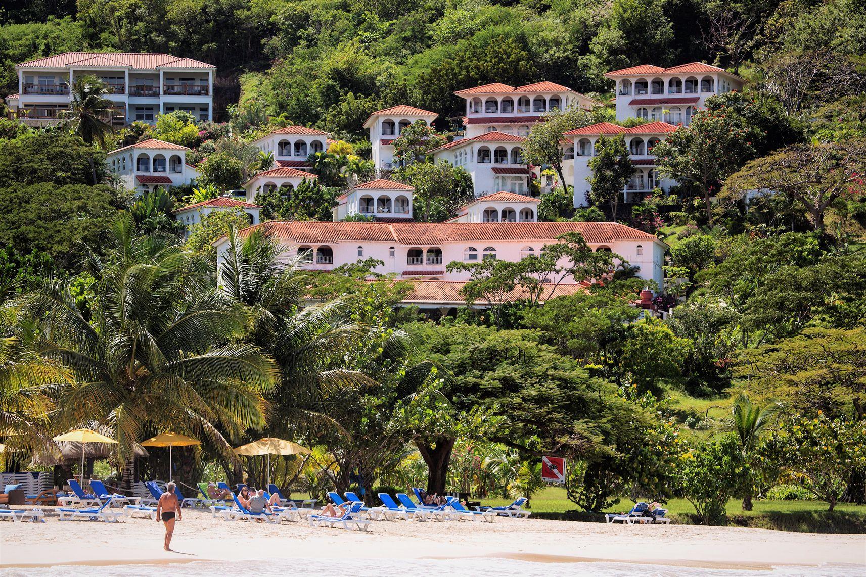 Grenada Mt Cinnamon LIO Global