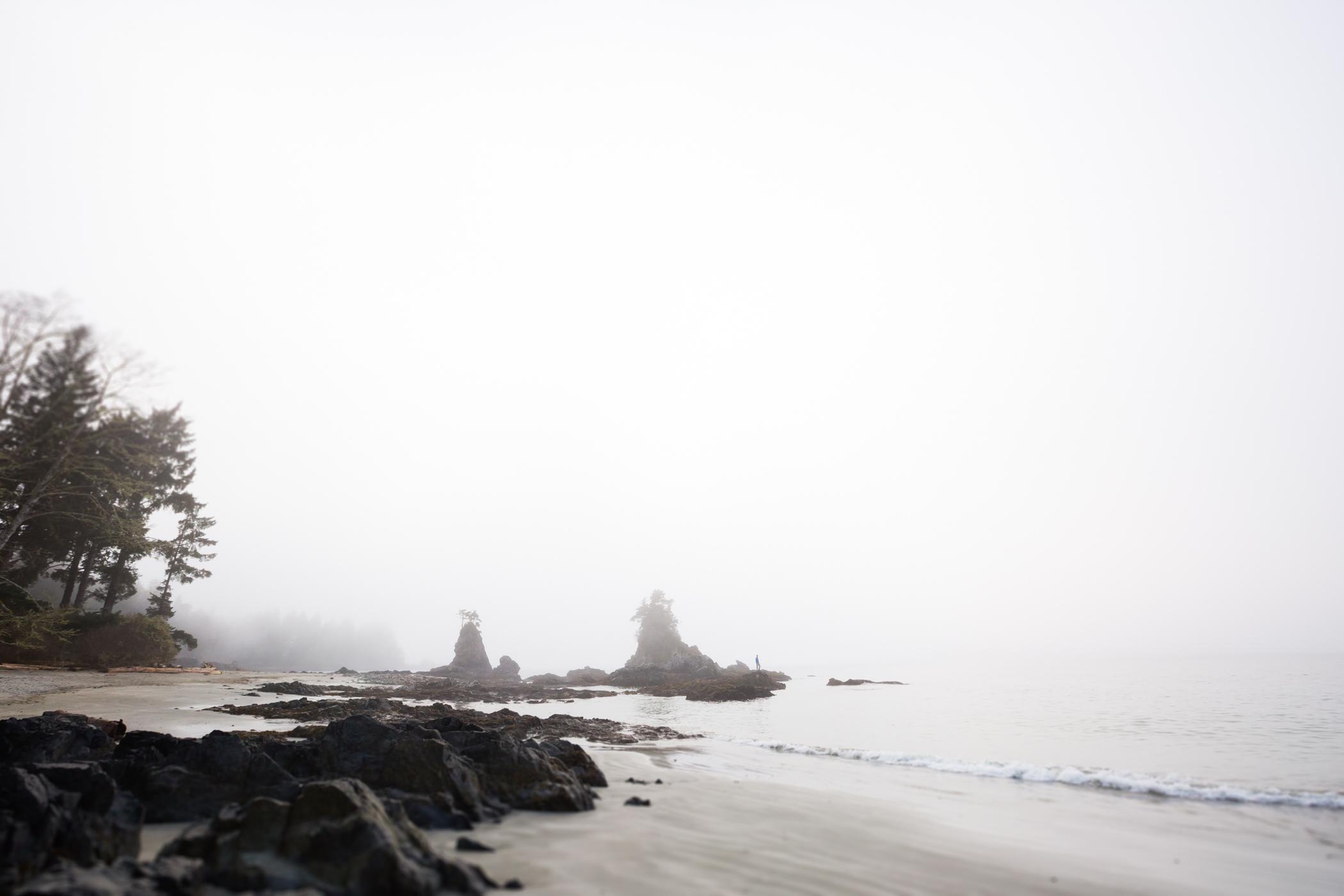 025_vancouver.island_2015.03_1580.jpg