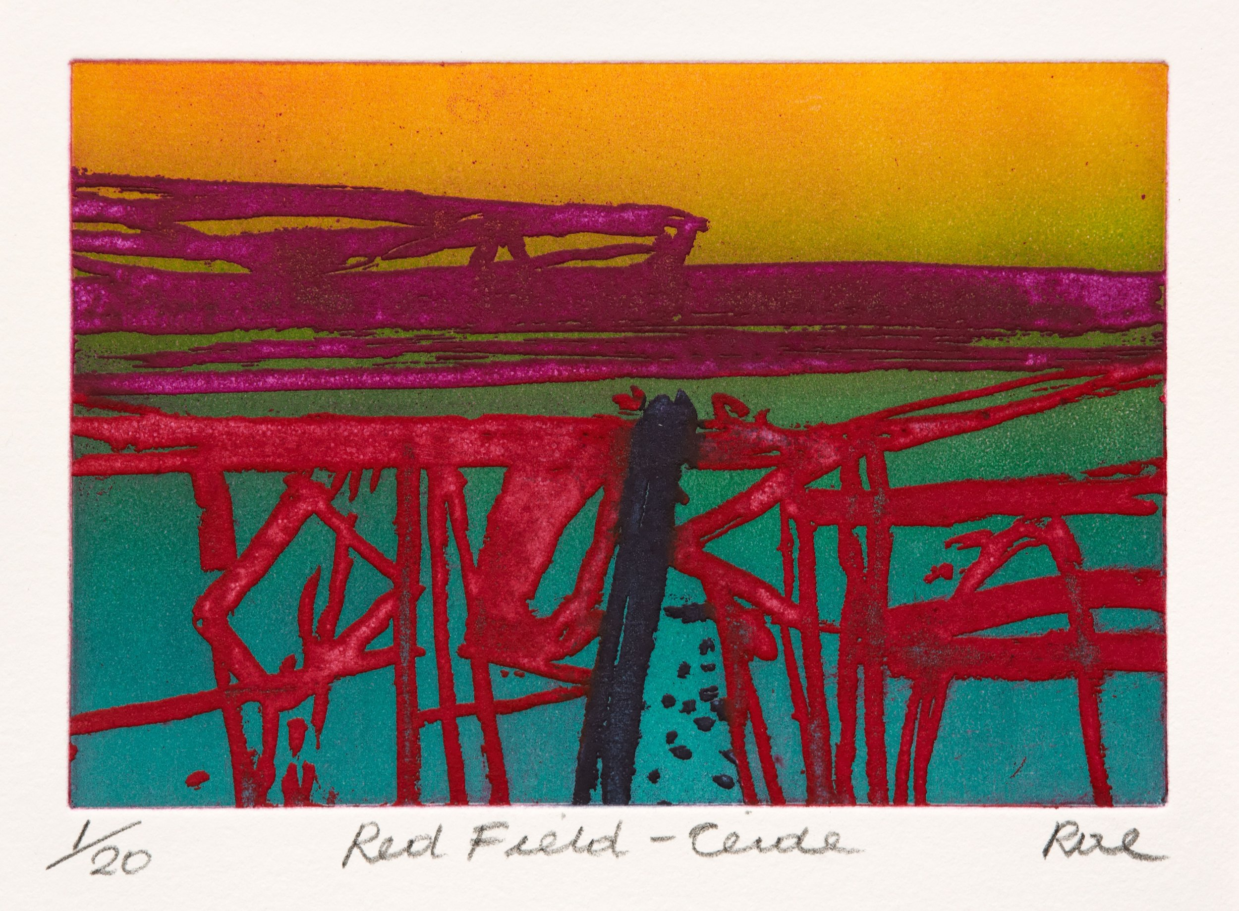 Barbara Rae - Red Field, Ceide