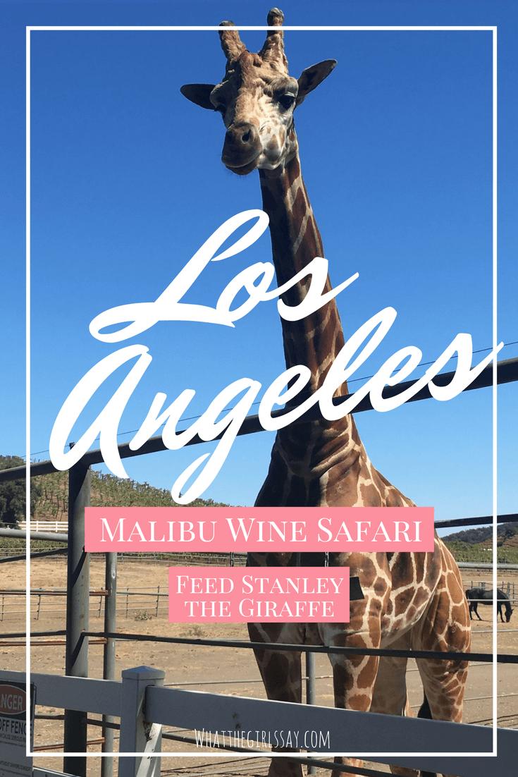 Malibu Wine Safari Review 30th Birthday Ideas in Los Angeles